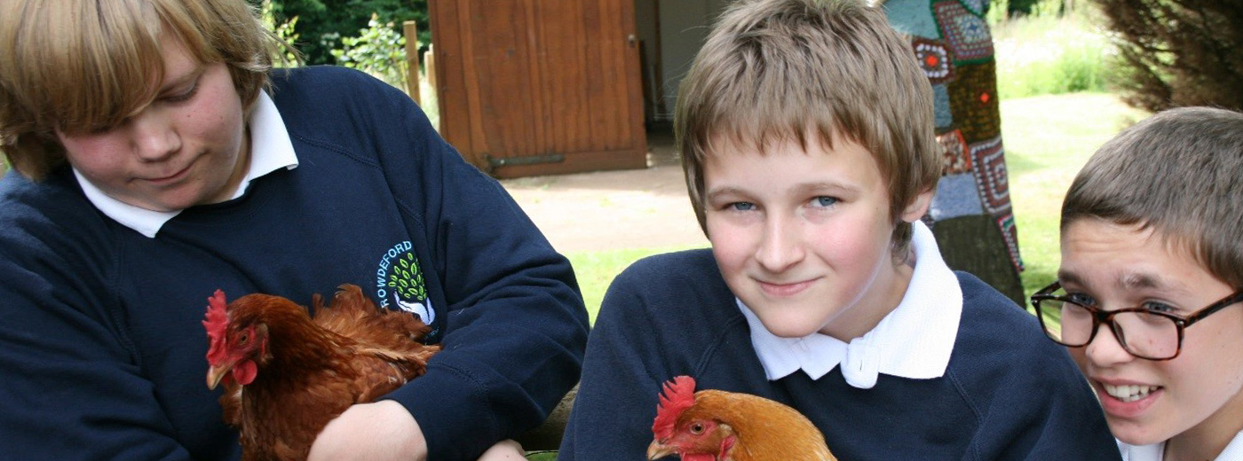 Rowdeford students with chickens